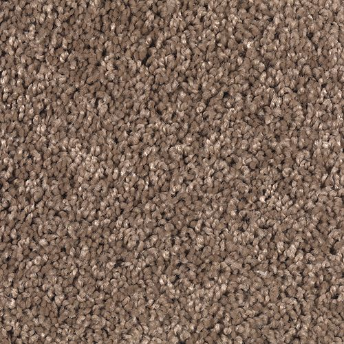 Playful Nature Taupe Star 103