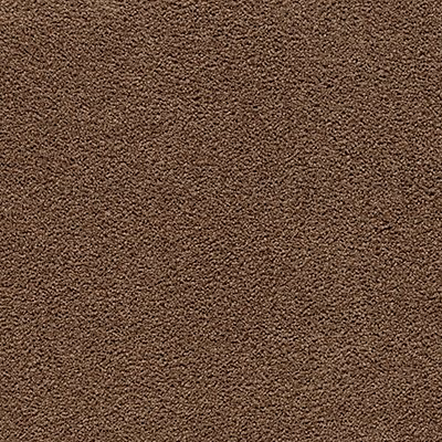 ProductVariant swatch small for Buffalo Creek flooring product
