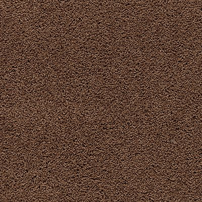 Pleasant Valley in Burnished Brown - Carpet by Mohawk Flooring