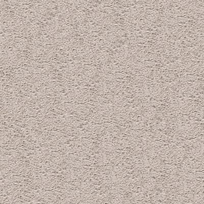 ProductVariant swatch small for Fine Silver flooring product