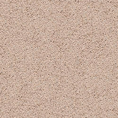 Cozy Comfort Desert Star 531