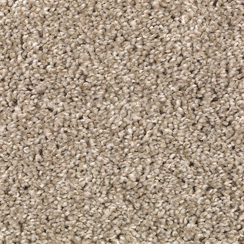 Exquisite Class Pale Taupe 113