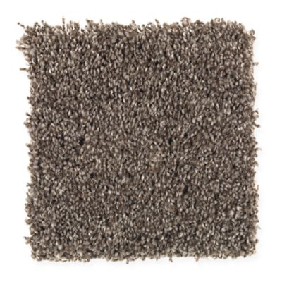 ProductVariant swatch small for Tree Branch flooring product