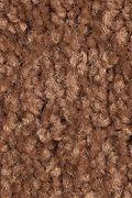 Mohawk Serene Sierra - Pumpkin Spice Carpet