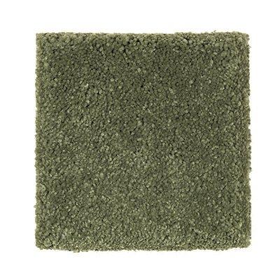 Serene Sierra in Putting Green - Carpet by Mohawk Flooring