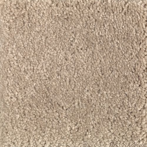 Splendid Opportunity Brushed Suede 838