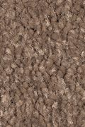 Mohawk Serene Sierra - Colonial Brown Carpet