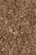 Mohawk Serene Sierra - Cedar Shingles Carpet