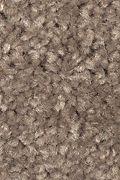 Mohawk Serene Sierra - Metropolitan Carpet