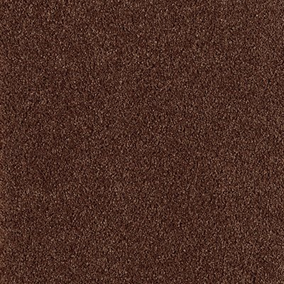 ProductVariant swatch small for Burled Walnut flooring product