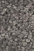 Mohawk Serene Sierra - Galvanized Carpet