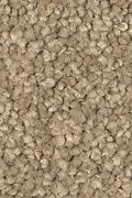 Mohawk Truly Tender I - Boardwalk Carpet