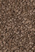 Mohawk Truly Tender III - Cocoa Powder Carpet