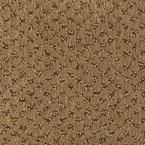 Comfortably Classic Moroccan Brown 872