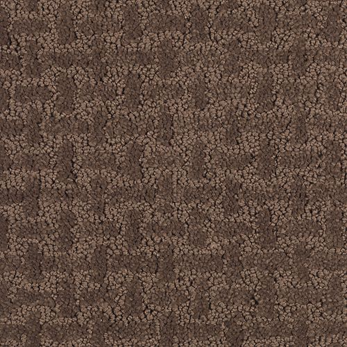 Westover Lane Burnished Brown 505