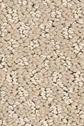 Mohawk Relaxed Approach - Desert Star Carpet