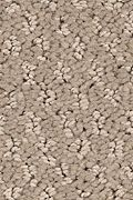 Mohawk Relaxed Approach - Sequoyah Dusk Carpet