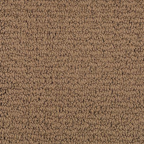 Fresh Sensation Autumn Brown 501