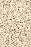 Mohawk Pleasant Nature - Amish Linen Carpet