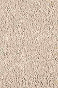 Mohawk Pleasant Nature - Desert Star Carpet