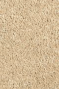 Mohawk Pleasant Nature - Homespun Carpet