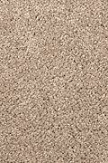 Mohawk Pleasant Nature - Sequoyah Dusk Carpet