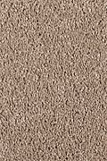 Mohawk Pleasant Nature - Canyon Glow Carpet