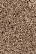 Mohawk Pleasant Nature - Cedar Beige Carpet