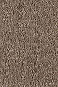 Mohawk Pleasant Nature - Hazy Taupe Carpet