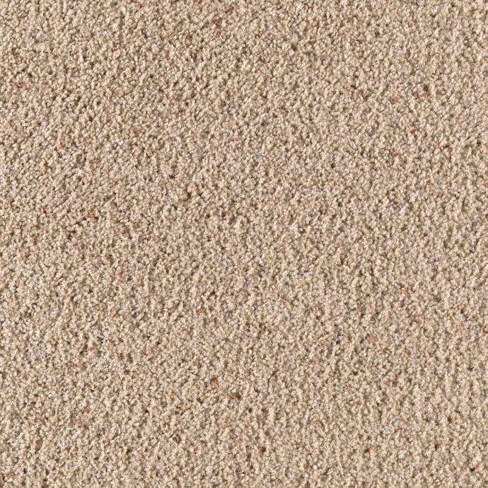 Desert Scene Cobble Path 105