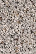 Mohawk Naturally Soft I - Perfect Taupe Carpet