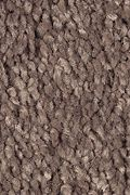 Mohawk Soft Attraction II - Warm Earth Carpet