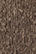 Mohawk Soft Attraction II - Rustic Beam Carpet