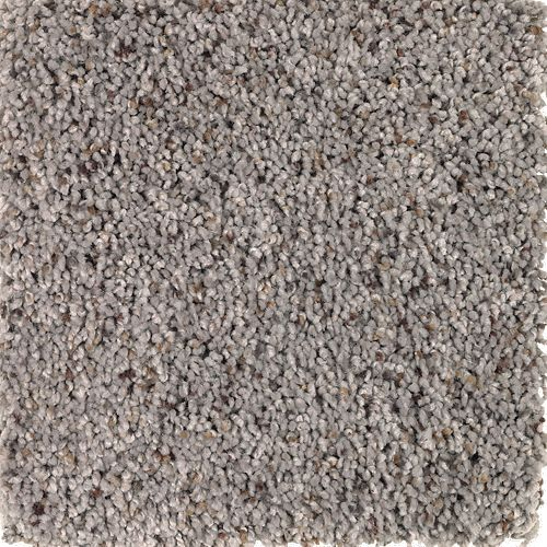 Mohawk Industries Naturally Soft Ii Truffle Carpet Tampa