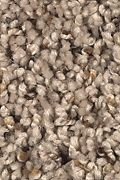 Mohawk Soft Creation III - Neutral Ground Carpet