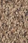 Mohawk Soft Creation I - Acorn Cap Carpet