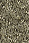 Mohawk Zen Garden - Cloverland Carpet
