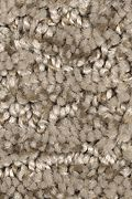Mohawk Zen Garden - Brushed Suede Carpet