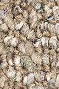 Mohawk Covina - Driftwood Carpet