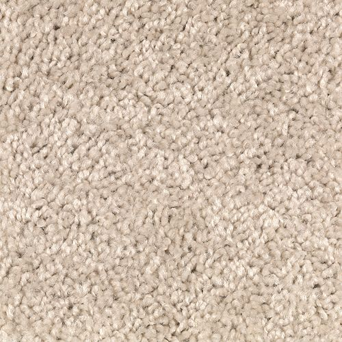 Mohawk Industries Avenger Shoreline Carpet Tampa New