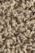 Mohawk Seeker - Whole Grain Carpet