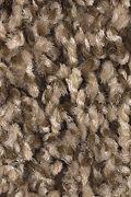 Mohawk Seeker - Gingerbread Carpet