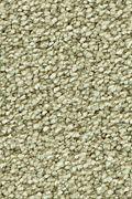 Mohawk Stylish Story I - Silk Grass Carpet