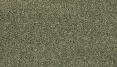 ProductVariant swatch small for Spring Note flooring product