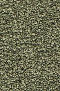 Mohawk Stylish Story I - Spring Note Carpet