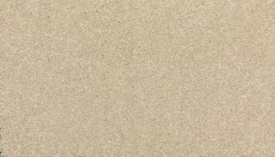 ProductVariant swatch small for Stone Lion flooring product