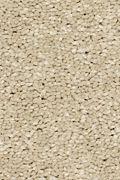 Mohawk Stylish Story I - Stone Lion Carpet