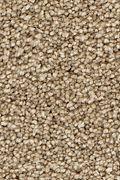 Mohawk Stylish Story I - Whole Grain Carpet