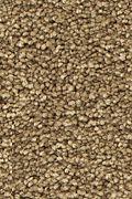 Mohawk Stylish Story I - Native Soil Carpet