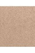 Mohawk Stylish Story I - Twig Carpet